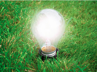 Sustainability Lightbulb