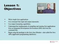 application development with microsoft access 2007 livelessons video training